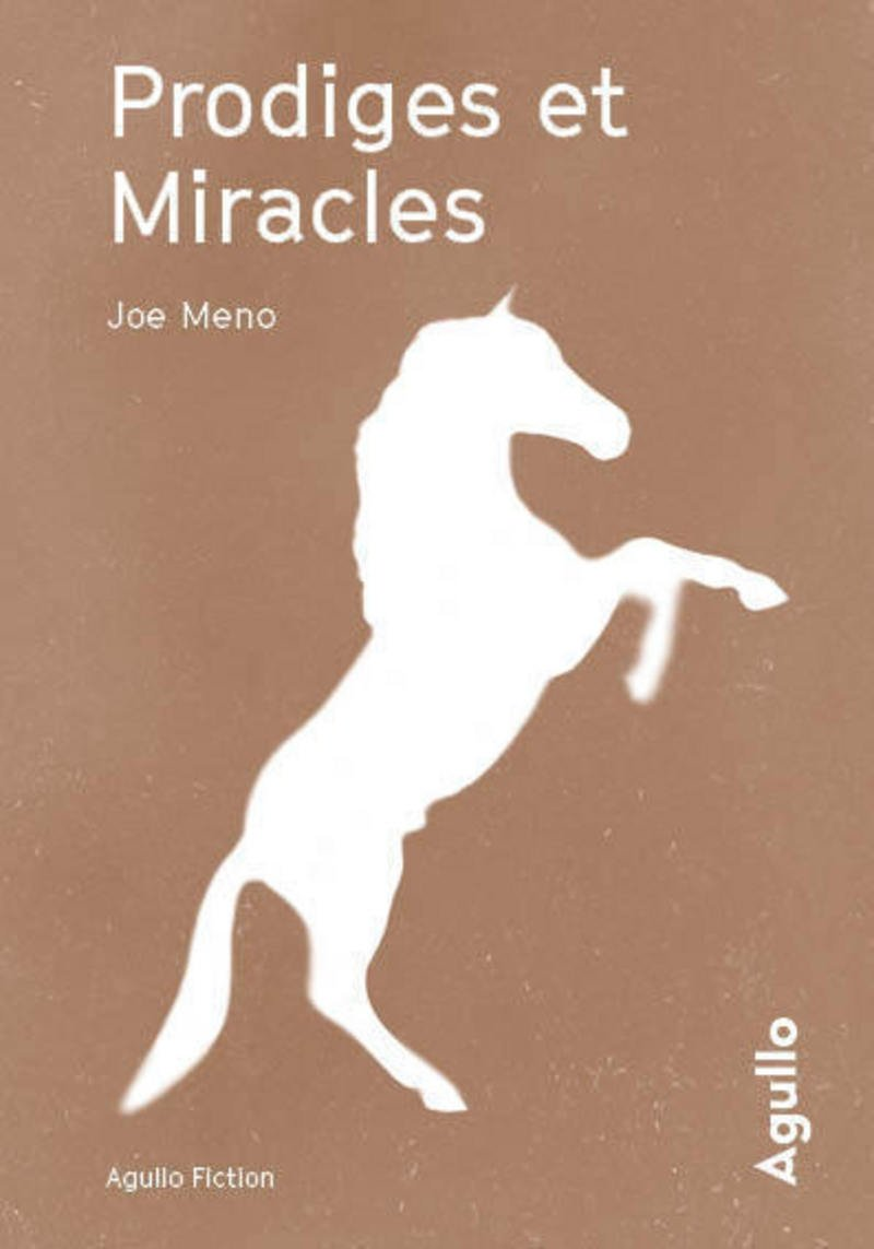 Prodiges et miracles de Joe Meno