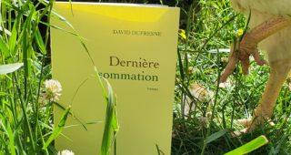 Dernière sommation de David Dufresne